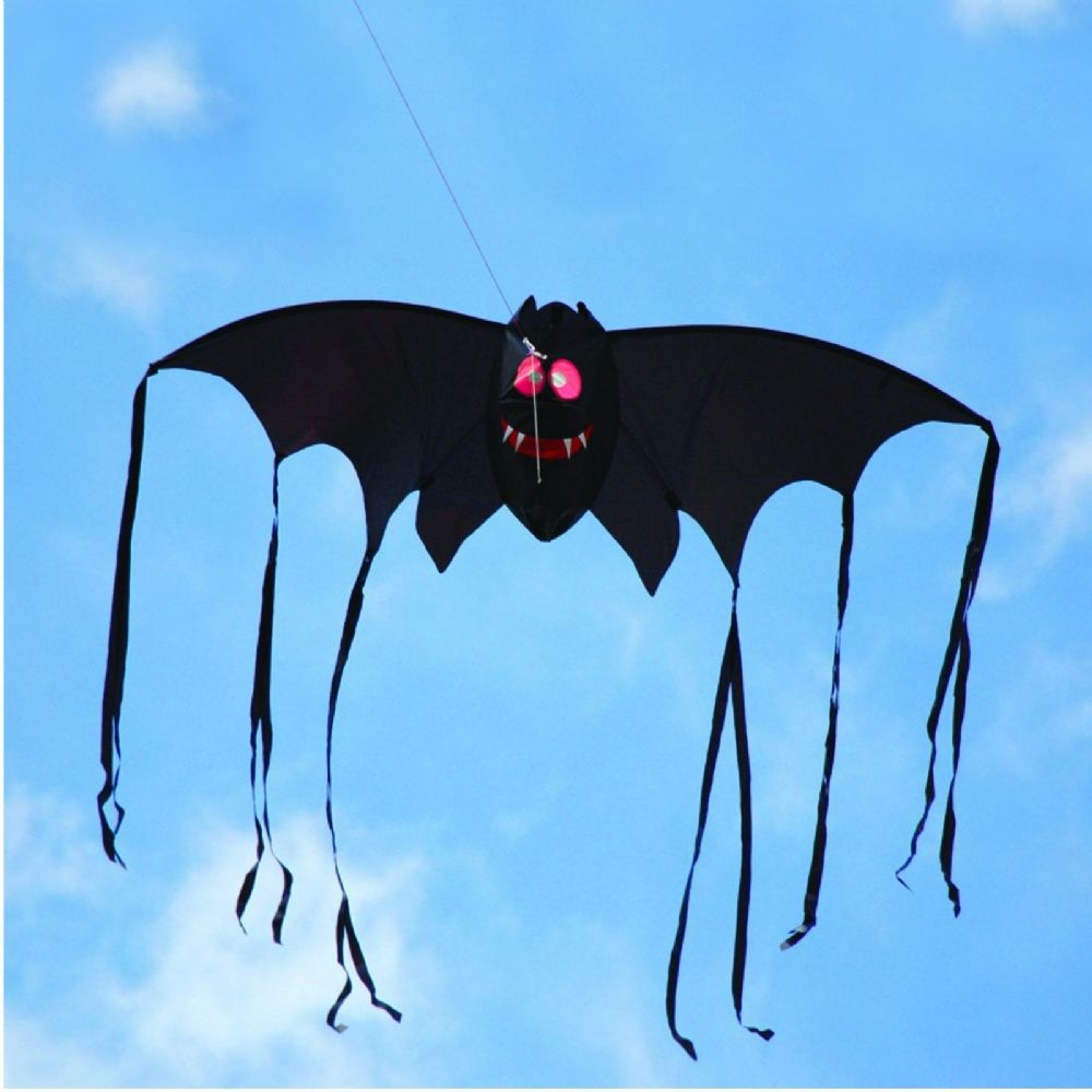 Brookite Childrens Spooky 3D Bat Kite Great for Beginners 6+ Years